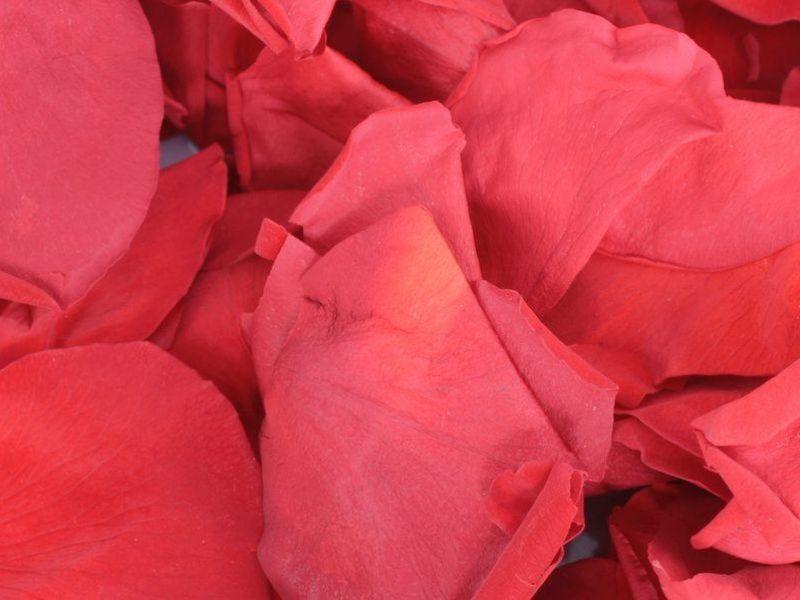 petals for funeral ceremonies